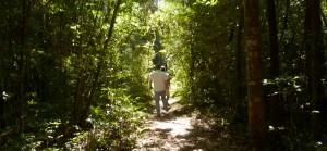 """Para la Pastoral Aborigen """"el camino por el Parque Moconá es legal y es moral"""""""