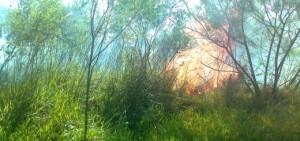 Advertencia por alto riesgo de incendios y vientos