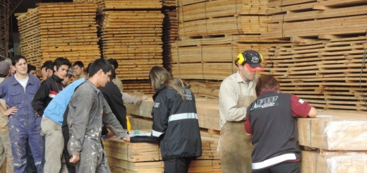 La Afip encontró trabajadores en negro en una empresa forestal de Eldorado