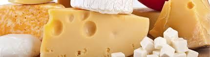 Brindarán capacitación de cómo elaborar quesos semiduros