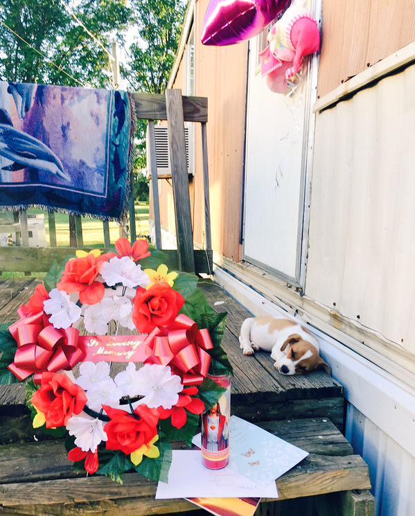 Un nene de 11 años mató a una nena de 8 por un cachorro