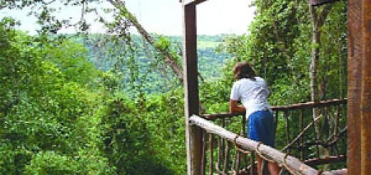 En Misiones ya existen más de 30 lodges en la selva