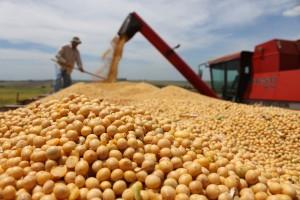 La devaluación aumentó el reparto del fondo de soja