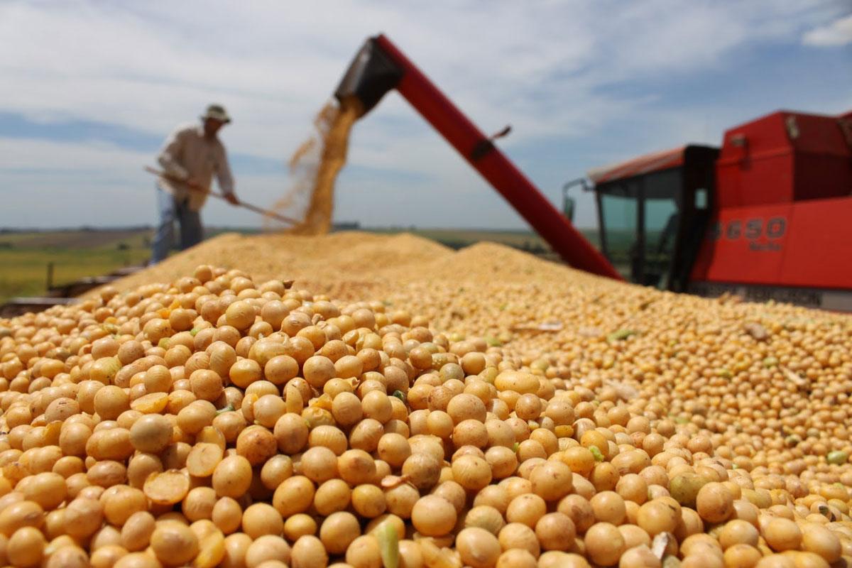 La devaluación compensará las menores retenciones a la soja