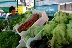 Del campo a la góndola: el precio de los productos agropecuarios  se multiplicó 7 veces en diciembre
