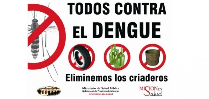 Dengue: la fuerza pública podrá ingresar a casas con posibles reservorios de mosquitos