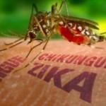 Pese al frio aumentaron los casos de dengue en Misiones