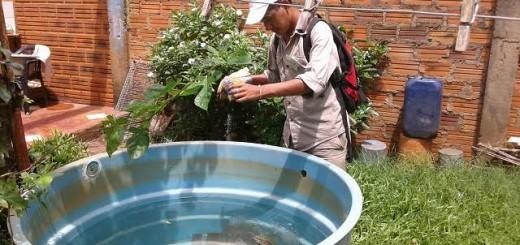 Dengue: Salud Pública confirma hasta hoy 3.987 casos sospechosos
