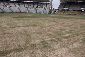 La cancha donde jugará Argentina por eliminatorias está en pésimas condiciones