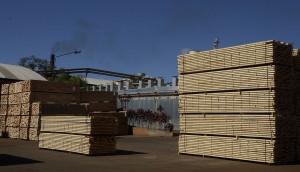 Aseguran que un subsidio a los costos logísticos locales sería la medida adecuada para reactivar las exportaciones madereras