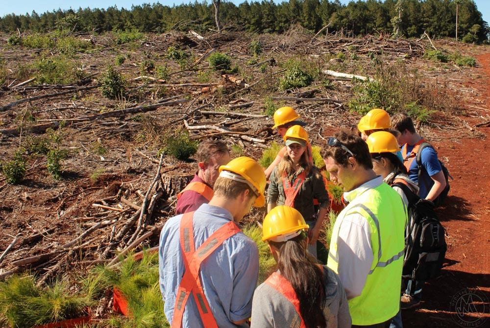 """Ricardo Austin, de Arauco SA: """"El sector forestal fue superando obstáculos en estos meses de pandemia y eso es alentador, pero estamos frente a una cadena de pagos complicada para todos en general"""""""