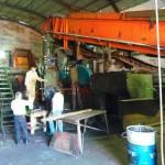 Preocupa el bajo porcentaje de dulzura de la caña de azúcar en San Javier