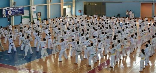 Gran convocatoria del Taekwondo misionero en el CEPARD