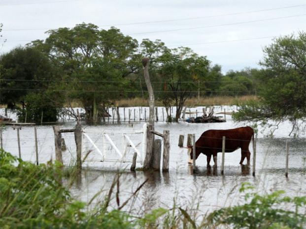 """En Santa Fe, el paisaje provocado por las inundaciones es """"desolador»"""