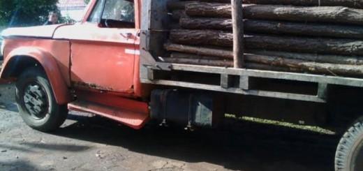 Retuvieron camión que circulaba con excesiva carga de madera y sin medidas seguridad