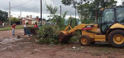El municipio eliminó minibasurales en Posadas