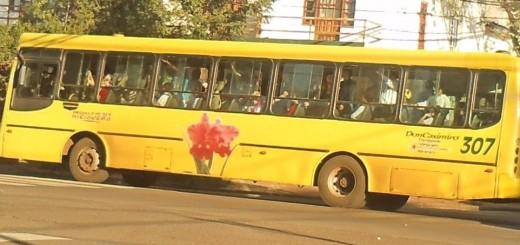 Las empresas de transporte automotor de pasajeros en situación de alerta por quita de subsidios de Nación