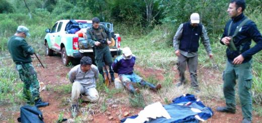 Nuevas detenciones por caza ilegal en la reserva de Biosfera Yabotí