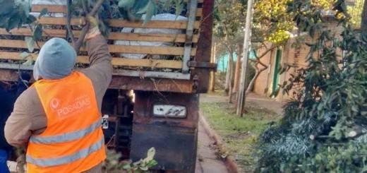 Se realizó un operativo integral en el barrio 170 Viviendas de Posadas