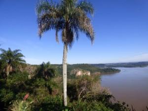 Teyú Cuaré: su paisaje, su historia y la conservación de su entorno natural lo convierten en un ambiente único en el mundo