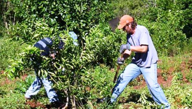 Funcionarios del Agro viajarán a Israel en búsqueda de acuerdos sobre tecnología y capacitación
