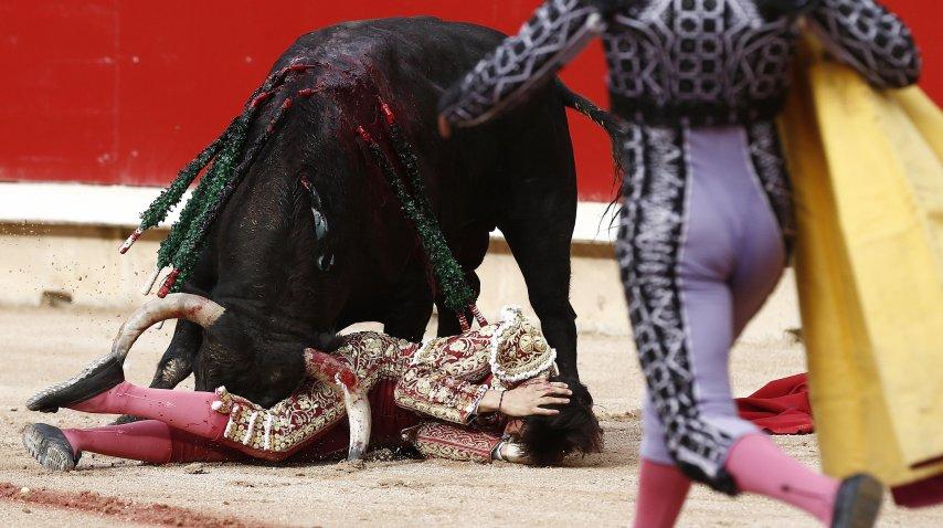 Espectaculares imágenes: en España un toro corneó al torero en los testículos pero siguió con la faena y salió en andas