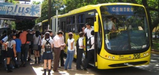 Polémica por subsidios: Losada afirmó que las transportistas pretenden cobrar de más