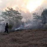 Bomberos trabajan para extinguir un incendio cerca del Centro de Convenciones de Posadas