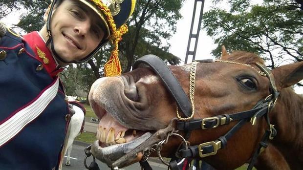 La selfie que se hizo viral: un granadero se fotografió con un caballo