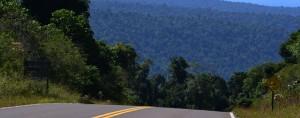 El destino Yabotí será incluido entre cinco de los principales puntos turísticos del país que promocionará el gobierno nacional