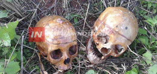 Macabro: hallaron cráneos humanos al costado de la ruta que une Encarnación con Asunción