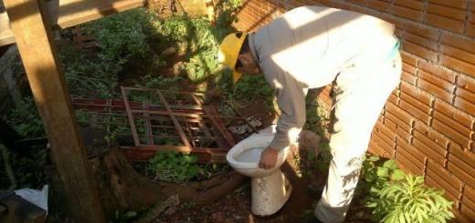 Interbrote: continúan las acciones de prevención contra el dengue en Misiones