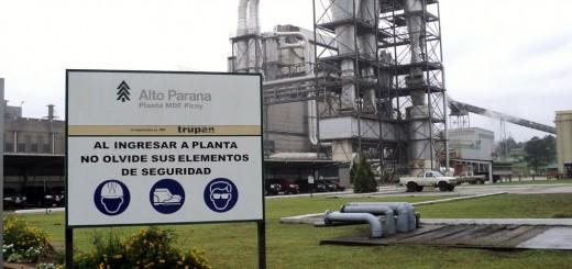 Alto Paraná facturó casi $3000 millones en el primer semestre del año pero sus ganancias se desinflan