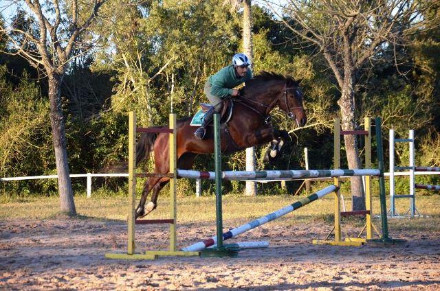 El Jockey Club Posadas puso a prueba sus pistas de saltos hípicos