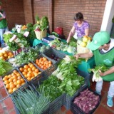 La Feria Franca llegó a la plaza 9 de Julio