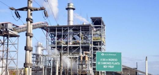 Denuncian que Alto Paraná Arauco quiere 70 mil hectáreas más en Misiones
