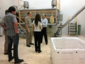 Arcor analiza productos misioneros que puedan industrializarse