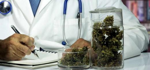 Cambiemos impulsa ley para investigar la marihuana para uso medicinal