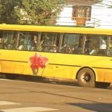 """Transporte urbano en Posadas: """"Hasta el momento no hemos constatado que haya reducción de frecuencias"""", sostienen desde el municipio"""