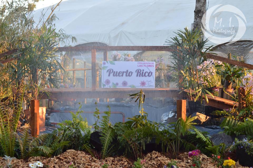 Con éxito comenzó la octava Expo de la Región de las Flores en Puerto Rico