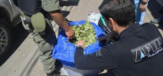 Afip secuestró una tonelada de hojas de coca, dólares y vehículos en diferentes operativos
