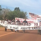 Alto Paraná/Arauco se acogerá al blanqueo de Macri para no pagar millones a la Afip