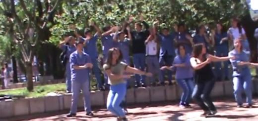 Alumnos de la Epet 1 de Posadas también grabaron un video para el concurso de Agapornis
