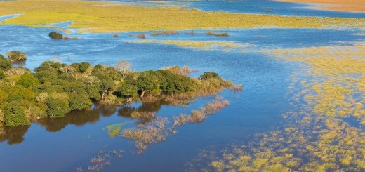 Se firma hoy acuerdo para la creación del Parque Nacional Iberá en Corrientes