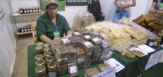 Productores y fabricantes locales buscan hacer conocer su marca en la Feria Forestal