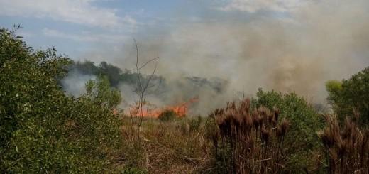 No descartan que haya sido intencional el incendio de unas 200 hectáreas de la reserva San Juan