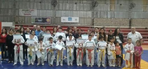 Juegos Deportivos Misioneros: más de 100 posadeños participaron en disciplinas de combate