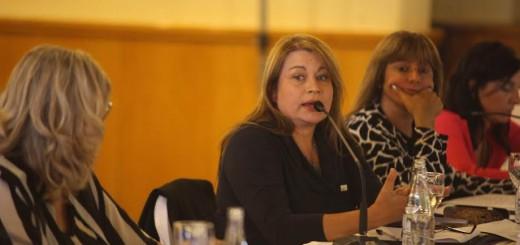 Dengue y discapacidad: dos de los temas que discutió el Consejo Federal de Educación