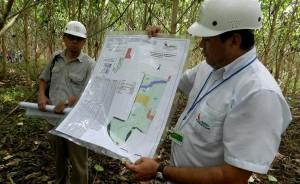 La gestión ambiental entre los principales desafíos de la Ingeniería Forestal