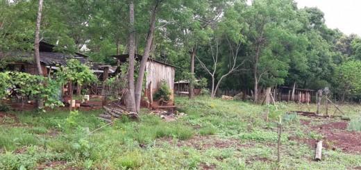 Temporal en Misiones dejó una víctima fatal: en Eldorado una mujer fue alcanzada por un rayo